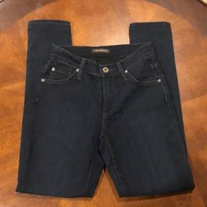 James Jeans Twiggy Luxe Skinny Jeans Size 26 NWOT
